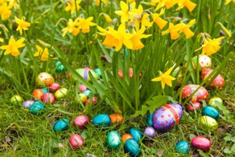image oeufs de pâques printemps