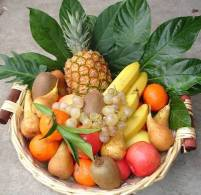 fruits printaniers