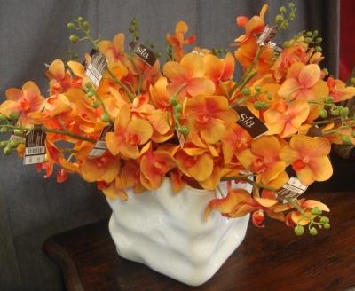 image bouquet d'orchidée
