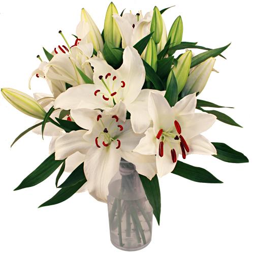 image bouquet de fleur de Lys pour fête des mères
