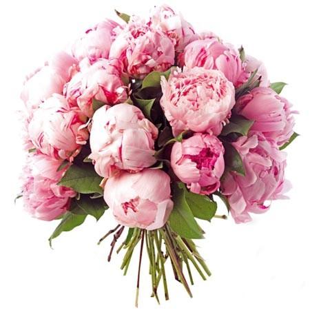 image bouquet de pivoine pour fête des mères