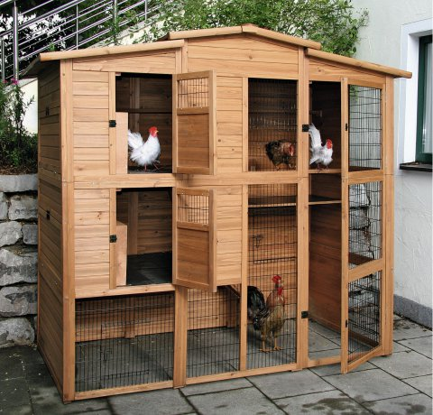 A henhouse with chickens