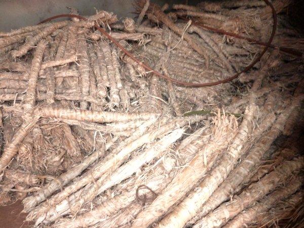 fibres-decorces-davoha