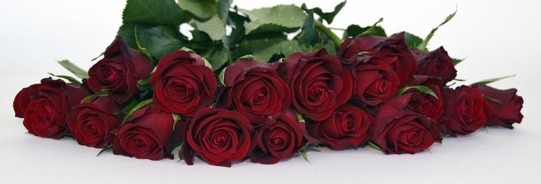 bouquet de fleurs s