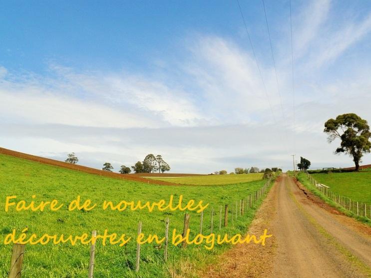 nouvelles découvertes_blog