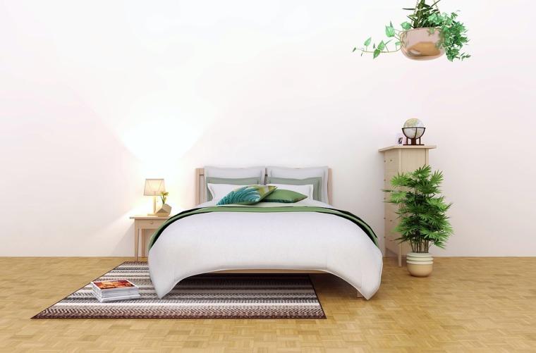 plantes d'intérieur_chambre à coucher