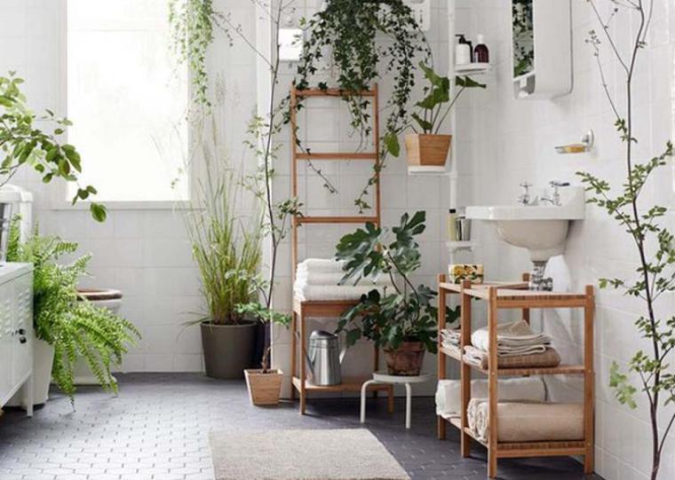 plantes d'intérieur_salle de bain