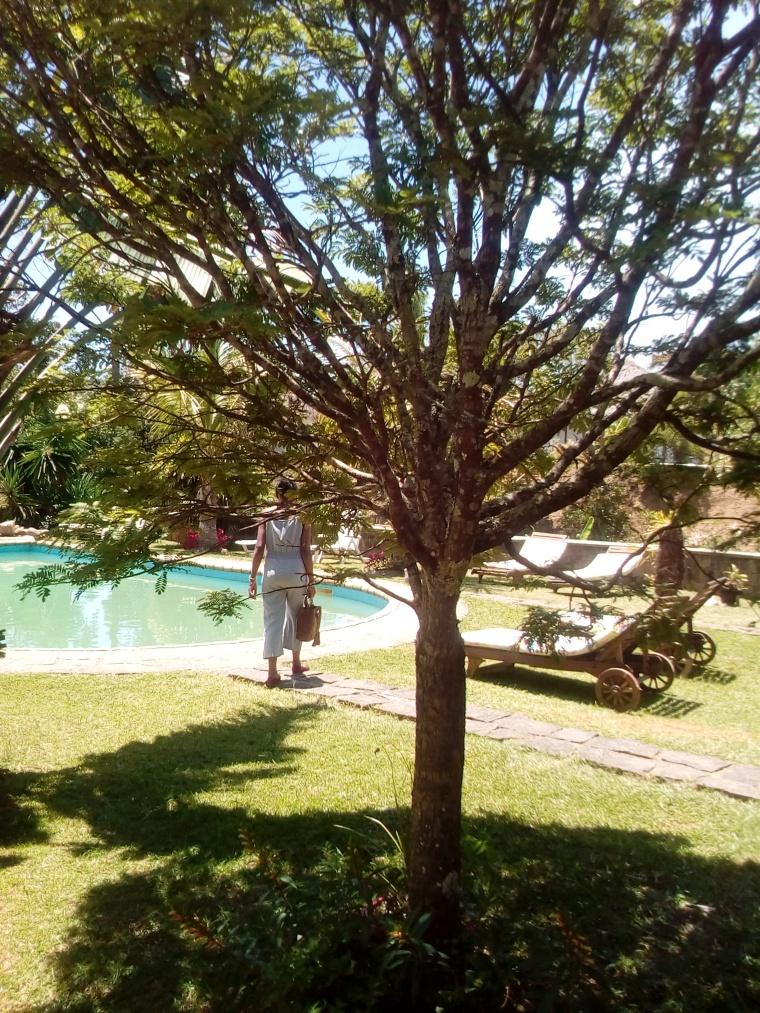 jardin indri lodge andasibe7