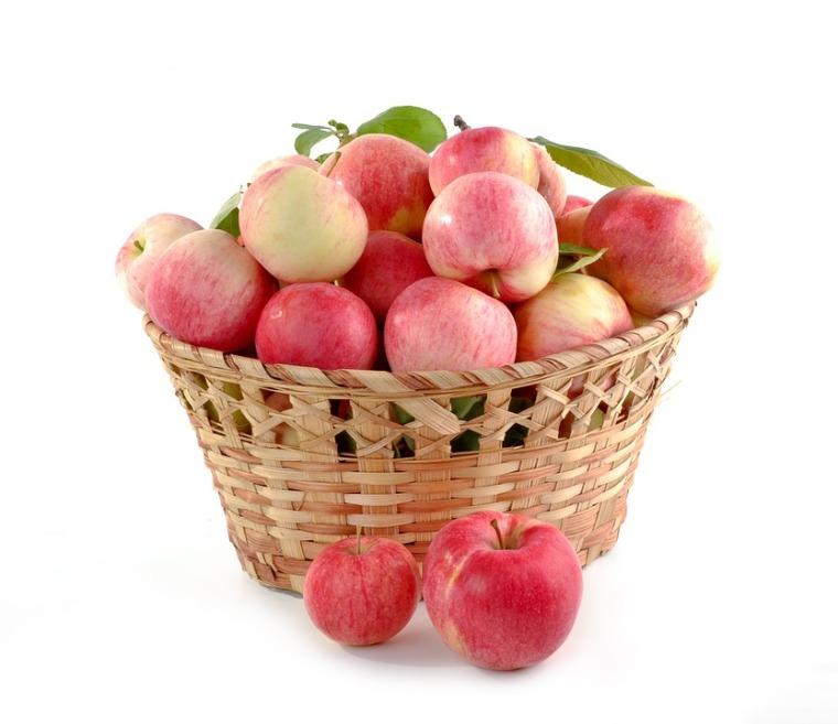 fruits_régime alimentaire femme enceinte