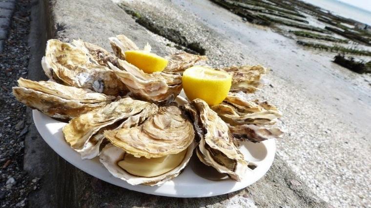 huîtres_mollusques